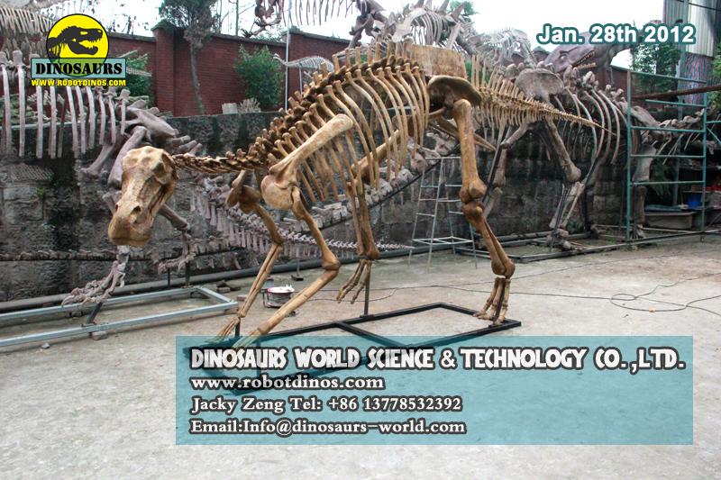 DWS019-1 Life Size Hadrosaurus Skeleton Replica