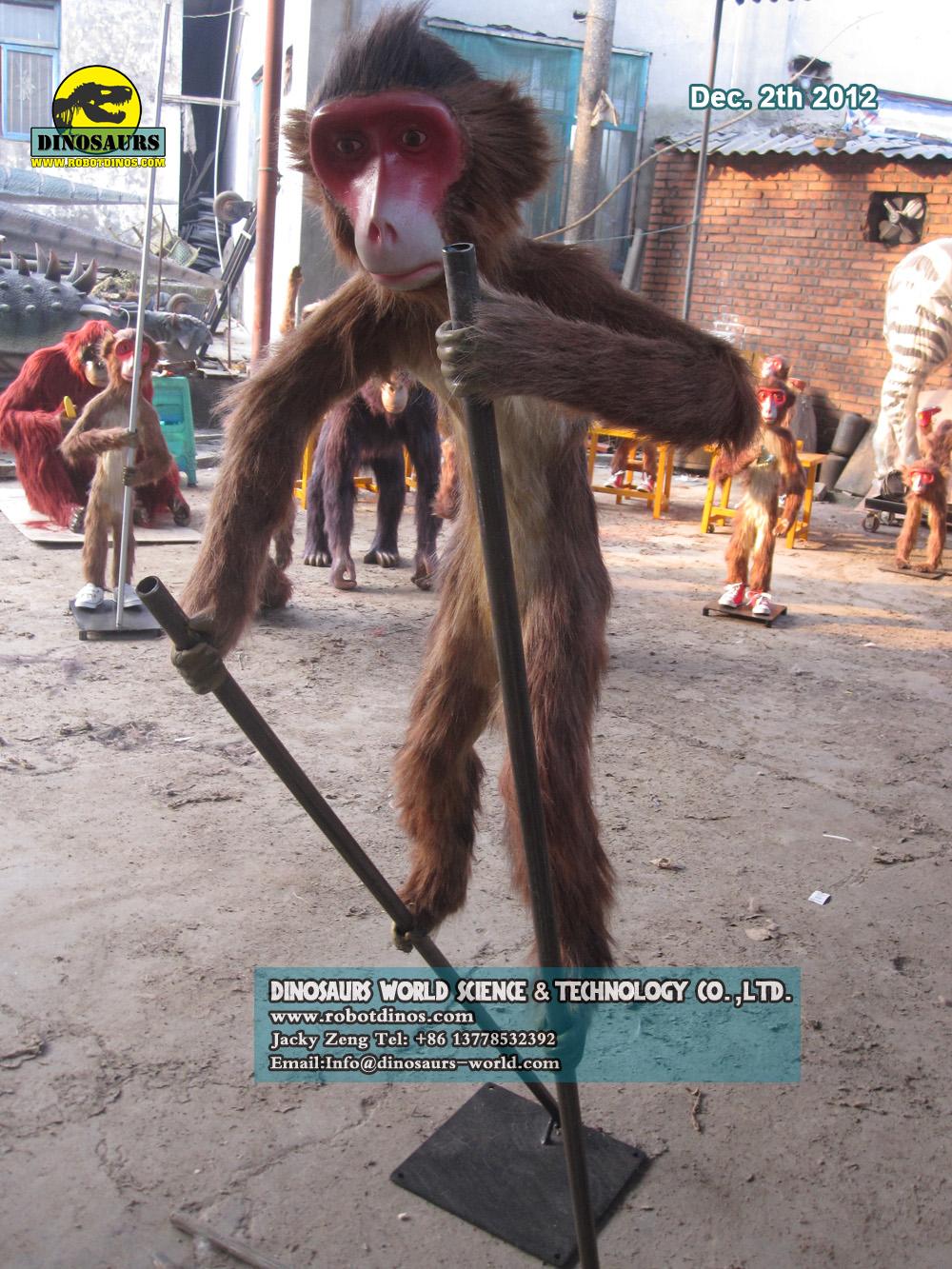 Exhibition Show Monkeys