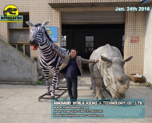 Rhino and Zebra are always Friends ?